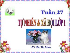 GV Bi Th Doan Th hai ngy 12