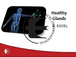 Healthy Glands E EXCEL The Endocrine System The