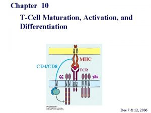 Chapter 10 TCell Maturation Activation and Differentiation MHC