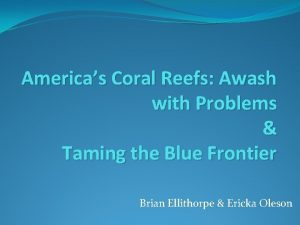 Americas Coral Reefs Awash with Problems Taming the