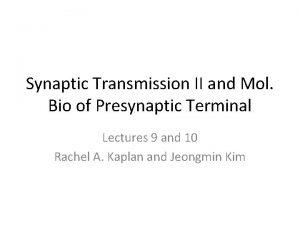 Synaptic Transmission II and Mol Bio of Presynaptic