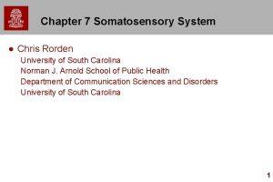 Chapter 7 Somatosensory System l Chris Rorden University