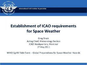International Civil Aviation Organization Establishment of ICAO requirements