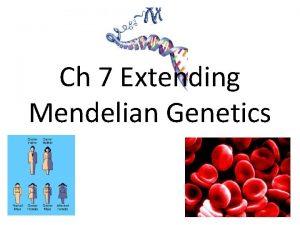 Ch 7 Extending Mendelian Genetics Studying Human Genetics