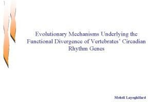 Evolutionary Mechanisms Underlying the Functional Divergence of Vertebrates