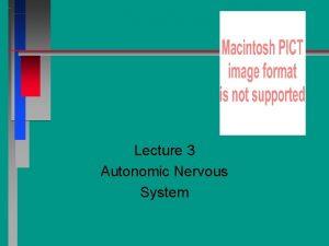 Lecture 3 Autonomic Nervous System Chapter 20 Autonomic