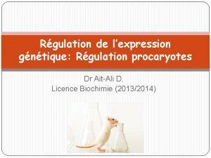 Rgulation de lexpression gntique Rgulation procaryotes Dr AitAli