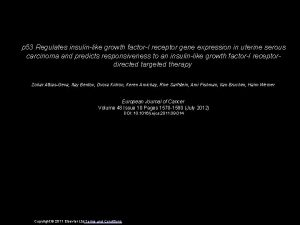 p 53 Regulates insulinlike growth factorI receptor gene