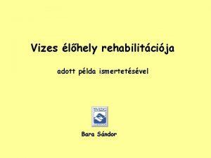 Vizes lhely rehabilitcija adott plda ismertetsvel Bara Sndor