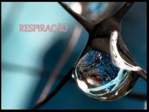 RESPIRAO Modifique sua emoo atravs da respirao Respire