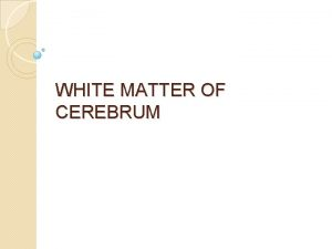 WHITE MATTER OF CEREBRUM White matter is a