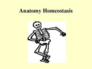 Anatomy Homeostasis I Homeostasis and Disease A Homeostasis