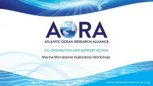 Marine Microbiome Exploratory Workshops Marine Microbiome The marine