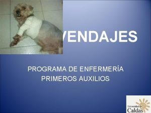 VENDAJES PROGRAMA DE ENFERMERA PRIMEROS AUXILIOS DEFINICIN Procedimiento