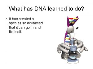What has DNA learned to do It has