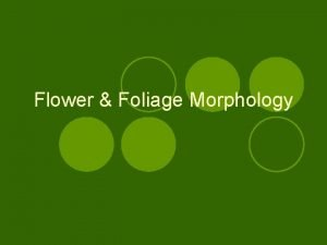 Flower Foliage Morphology Parts of the Flower Flower