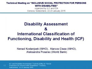Technical Meeting on INCLUSIVE SOCIAL PROTECTION FOR PERSONS