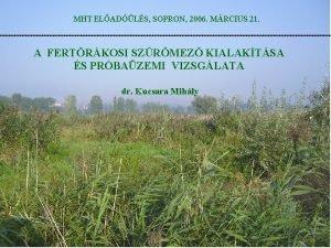 MHT ELADLS SOPRON 2006 MRCIUS 21 A FERTRKOSI