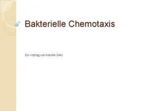 Bakterielle Chemotaxis Ein Vortrag von Hendrik Dirks 1