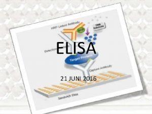 ELISA 21 JUNI 2016 ELISA Enzymelinkedimmunosorbent assay Salah