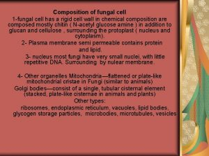Composition of fungal cell 1 fungal cell has