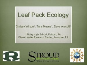 Leaf Pack Ecology Chrissy Wilson 1 Tara Muenz