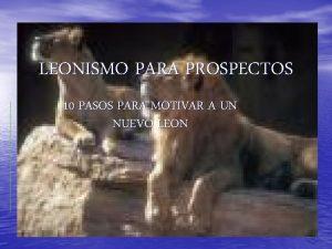 LEONISMO PARA PROSPECTOS 10 PASOS PARA MOTIVAR A