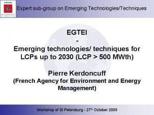 Expert subgroup on Emerging TechnologiesTechniques EGTEI Emerging technologies