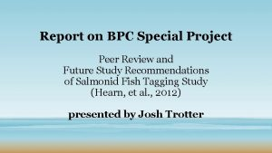 Report on BPC Special Project Peer Review and