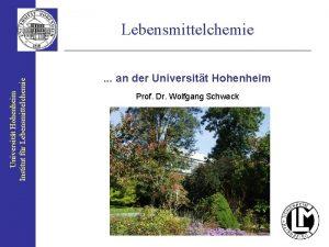 Universitt Hohenheim Institut fr Lebensmittelchemie an der Universitt