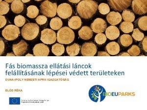 Fs biomassza elltsi lncok fellltsnak lpsei vdett terleteken