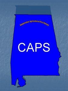 CAPS WHAT IS CAPS n Cooperative Agriculture Pest