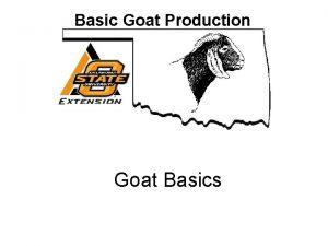 Basic Goat Production Goat Basics Basic Goat Production