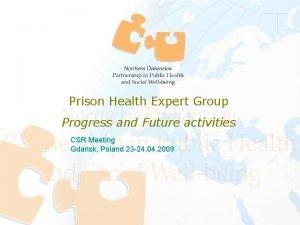 Prison Health Expert Group Progress and Future activities