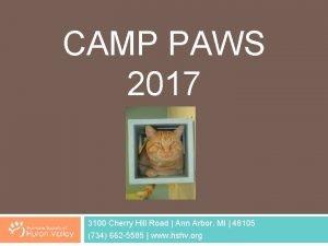 CAMP PAWS 2017 3100 Cherry Hill Road Ann
