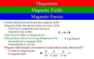 Magnetism Magnetic Fields Magnetic Forces Certain objects and