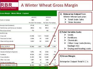 A Winter Wheat Gross Margin Winter Wheat England