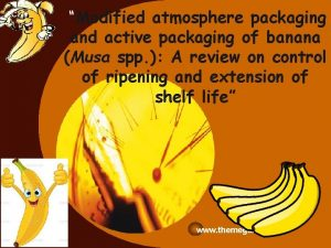Company LOGO Modified atmosphere packaging and active packaging