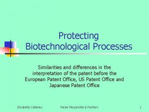 Protecting Biotechnological Processes Similarities and differences in the