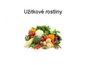 Uitkov rostliny Jmno autora Paed Dr rka Kindlov