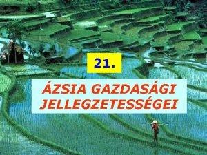 21 ZSIA GAZDASGI JELLEGZETESSGEI GAZDASGI FEJLETTSG FEJLETLEN FEJLETT