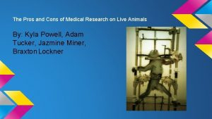 The Pros and Cons of Medical Research on