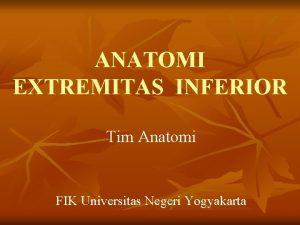 ANATOMI EXTREMITAS INFERIOR Tim Anatomi FIK Universitas Negeri