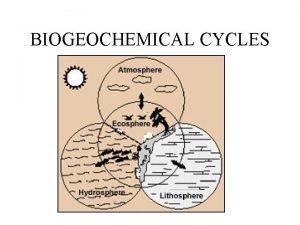 BIOGEOCHEMICAL CYCLES Fundamentals of biogeochemical cycles All matter