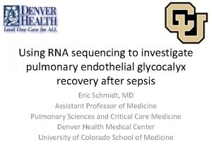 Using RNA sequencing to investigate pulmonary endothelial glycocalyx