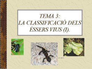 TEMA 3 LA CLASSIFICACI DELS SSERS VIUS I