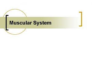 Muscular System Muscle Tissues n Skeletal Muscle n