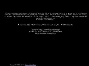 Human monoclonal Ig G antibodies derived from a