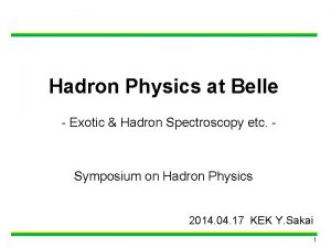 Hadron Physics at Belle Exotic Hadron Spectroscopy etc