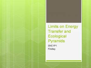 Limits on Energy Transfer and Ecological Pyramids SNC
